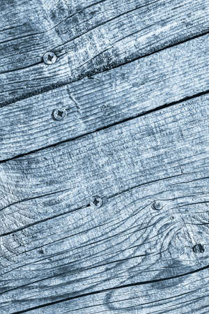 Blue Old Weathered Cracked Knotted Pine Wood Floorboard Grunge Texture With Rusty  Screws Embedded Detail 写真素材