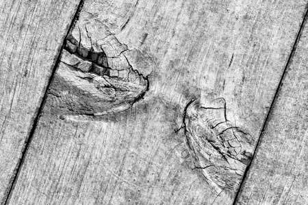 Gray Old Weathered Cracked Knotted Pine Wood Floorboard Grunge Texture Detail