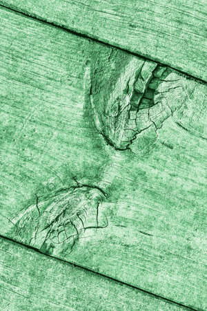 Green Old Weathered Cracked Knotted Pine Wood Floorboard Grunge Texture Detail