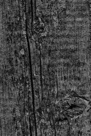 Black Old Weathered Cracked Knotted Pine Wood Floorboard Grunge Texture Detail
