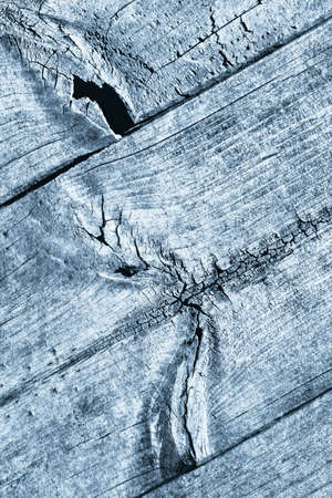 Blue Old Weathered Cracked Knotted Pine Wood Floorboard Grunge Texture Detail