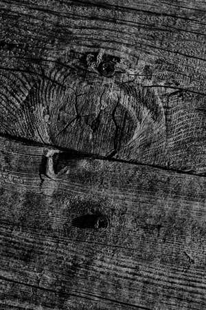 Black Old Weathered Cracked Knotted Pine Wood Floorboard Grunge Texture With Rusty  Screws Embedded Detail