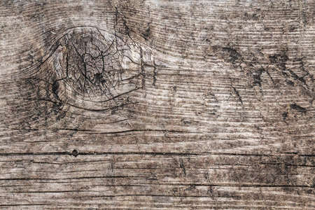 Old Weathered Rotten Cracked Knotted Rough Pinewood Floorboard Grunge Surface Texture Detail Stock Photo