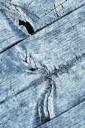 Blue Old Weathered Rotten Cracked Knotted Rough Pinewood Floorboard Grunge Surface Texture Detail