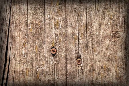 Old Weathered Cracked Knotted Pine Wood Floorboards With Rusty Phillips Screws Embedded Vignette Grunge Texture Detail 免版税图像
