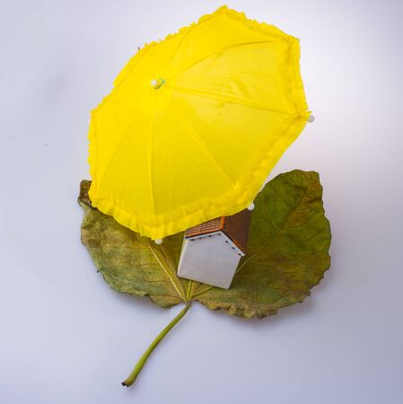 Little model house placed on an Autumn leaf and under an umbrella Stock Photo