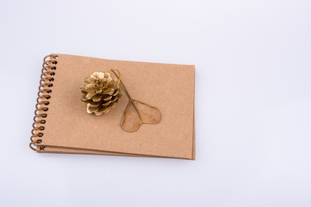 Heart shaped leaf,  pine cone and a notebook on a white background