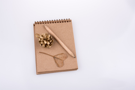 Heart shaped leaf,  pine cone and a pencil on a notebook on a white background