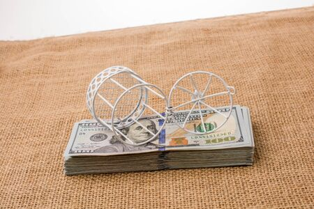Birds cage placed on  bundle of US dollar banknote