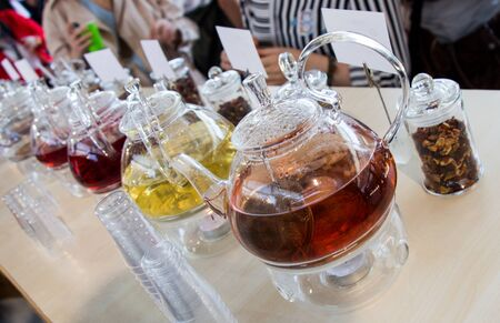 elixir: Herbal tea brewed in glass teapot and tea plant in a bottle