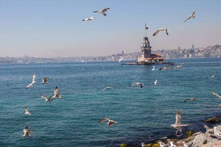 Seagulls and Maidens Tower located in Istanbul Stock Photo