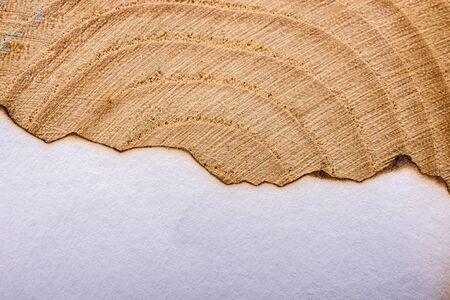 Papier met enkele verbrande randen