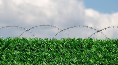 barbed wire fence: barbed wire fence  used for protection purposes of a pproperty Stock Photo
