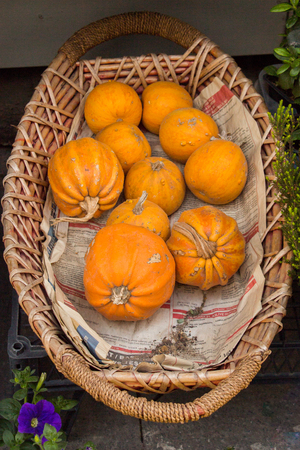 Pumpkins in a basket to be used for cooking