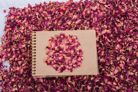 Dry rose petals  placed on a spiral notebook Stock Photo