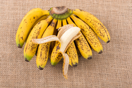 Bunch of yellow freckled bananas on a  canvas texture Stock Photo