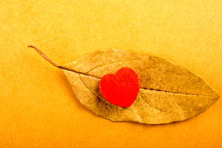 Heart shaped object placed on a dry leaf