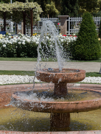 Water gushing off the fountain in the rose garden