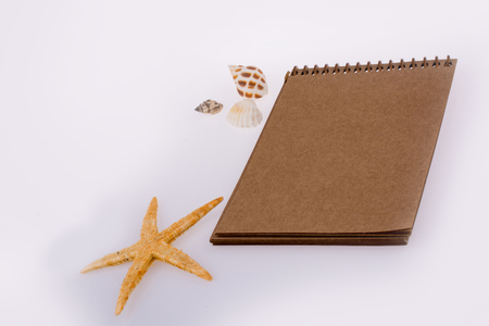 Little brown spiral notebook with  seashells  around on a white background Stock Photo