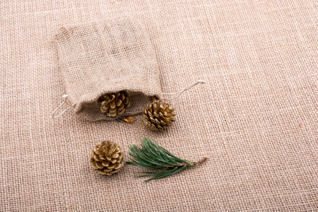 Pine cones out of sack on a canvas background