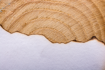 Paper with some burned edges