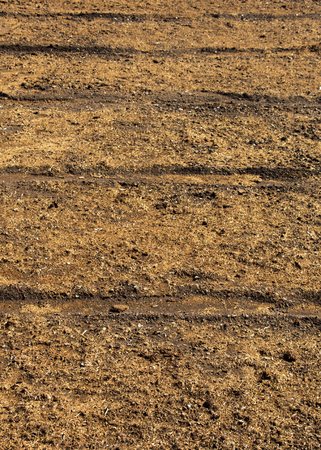 Plowed field with  traces in view in spring Stock Photo