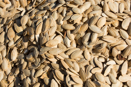 Abundant amount of shelled pumpkin seeds in the view