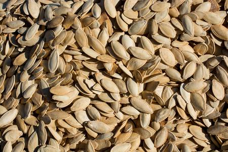 A lot of seeds large pumpkin seeds