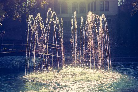 The fountains gushing sparkling water in a pool in a park