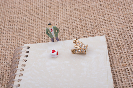 Figurine notebook and model crown