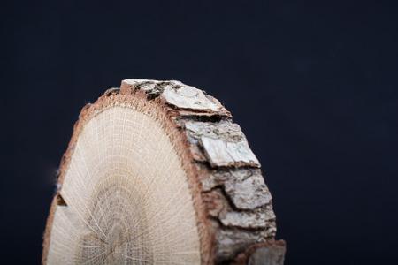 Piece of cut wood log texture as background Banco de Imagens