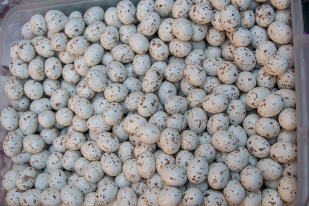 A pile of black spotted quail eggs  on display