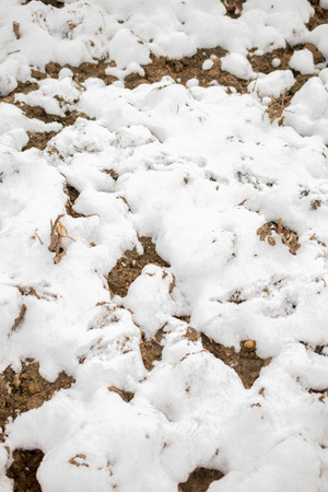 White snow on rocky and muddy surface on display