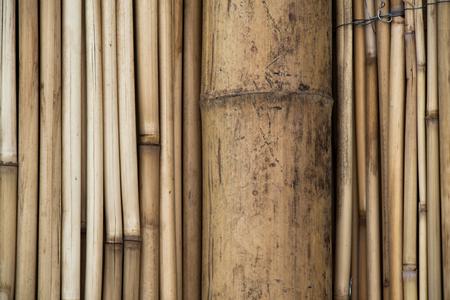 Bamboo sticks in stacks in view Stock Photo