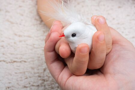 Two hands holding a fake white bird on white background