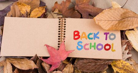 Open blank notebook with fallen autumn leaves  as a background Reklamní fotografie