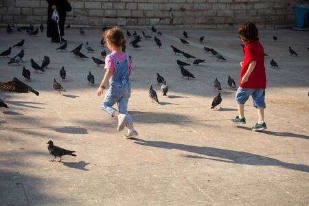 little boy and girl beside pigeons on stone pavement Stok Fotoğraf
