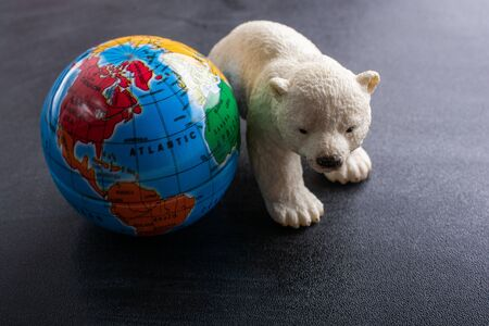 Polar bear model and a globe model in view