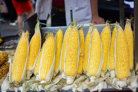Plenty of organic fresh peeled corns Фото со стока