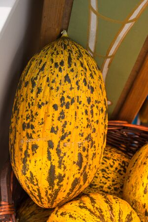 Green speckled melons in a straw basket in the view