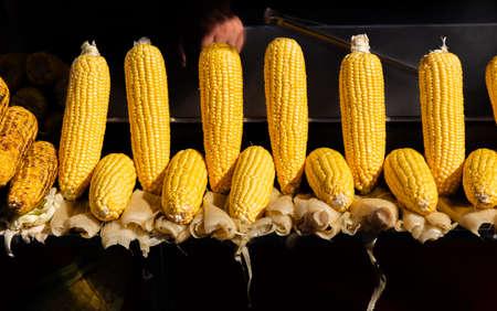 Plenty of organic fresh peeled corns as food background