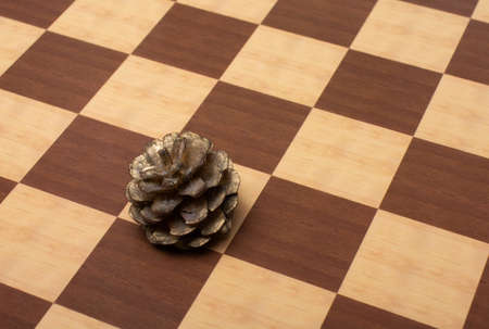 Pine cone on a checked background Stock Photo