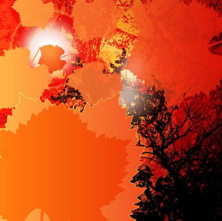 Autumn leaves grunge background Stock Vector - 10820103