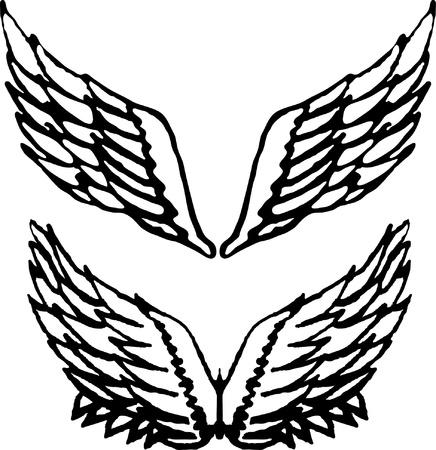 eagle wings: Set of wings Illustration