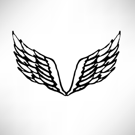artificial wing: Set of wings Illustration