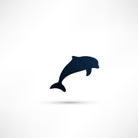Dolphin icon photo