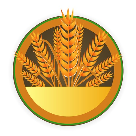modern wheat sign Vector
