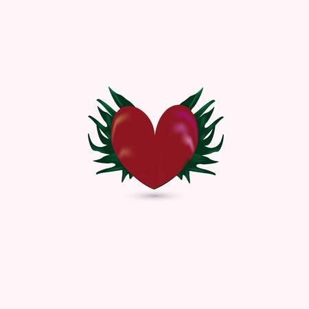 Red heart vector illustration isolated on white. Illustration