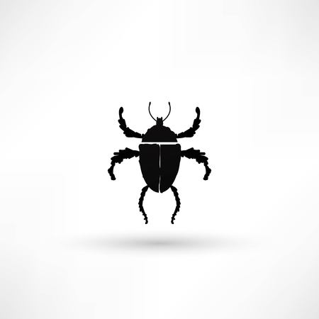 vector illustration of bug Vector
