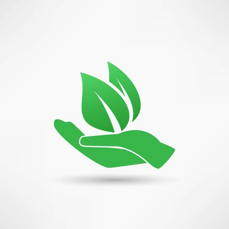 hand holding plant: Hands and plant icon Illustration